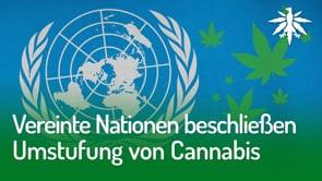 Vereinte Nationen beschließen Umstufung von Cannabis | DHV-News #273