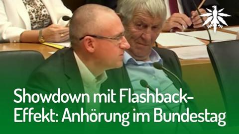 Showdown mit Flashback-Effekt Anhörung im Bundestag DHV-News #171