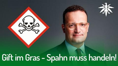 Gift im Gras - Spahn muss handeln!