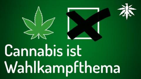 Cannabis ist Wahlkampfthema | DHV-News #281