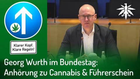 Georg Wurth im Bundestag: Anhörung zu Cannabis & Führerschein