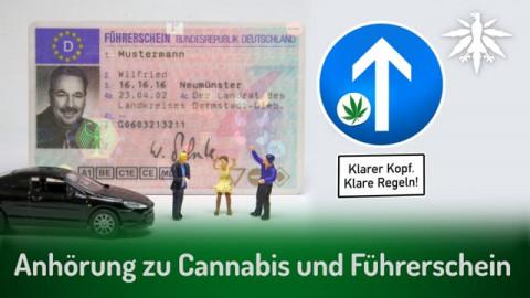 Anhörung zu Cannabis und Führerschein | DHV News #283