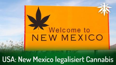 USA: New Mexico legalisiert Cannabis | DHV-News # 288