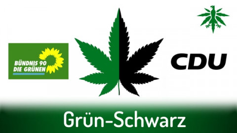 Grün-Schwarz | DHV-News # 291