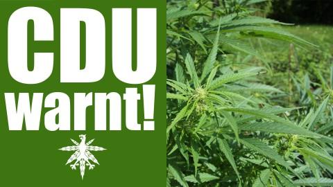 CDU warnt: Cannabislegalisierung droht! | DHV News #92