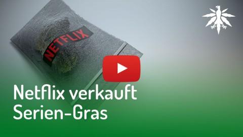 Netflix verkauft Serien-Gras | DHV News #134