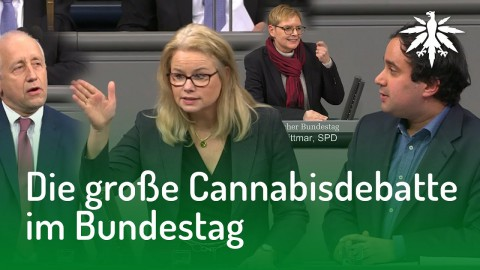 Die große Cannabisdebatte im Bundestag | DHV News #155
