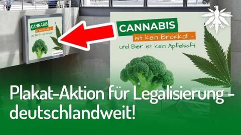 Plakat-Aktion für Legalisierung - deutschlandweit! | DHV-News #266