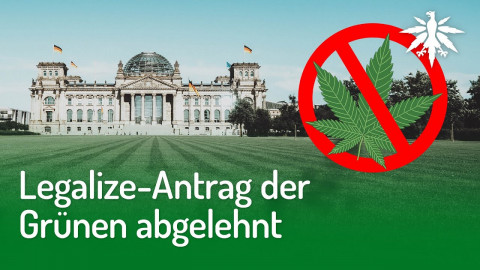 Legalize-Antrag der Grünen abgelehnt | DHV-News #263