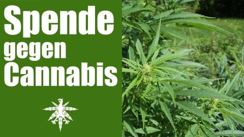 Pharmaunternehmen spendet gegen Legalisierung | DHV News #93