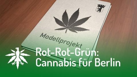 Rot-Rot-Grün will Cannabis in Berlin verteilen | DHV News #101