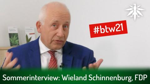 Sommerinterview: Wieland Schinnenburg, FDP