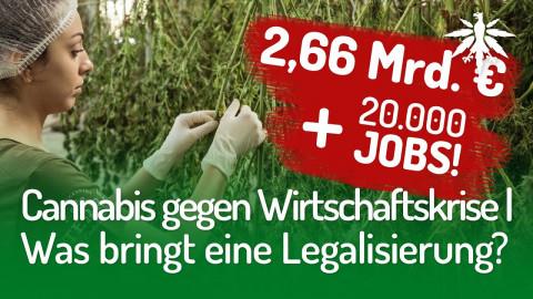 Cannabis gegen Wirtschaftskrise | Was bringt eine Legalisierung?