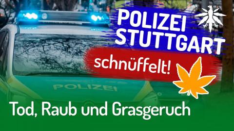 Tod, Raub und Grasgeruch | DHV-News #257