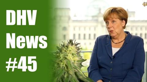 Youtube-Star LeFloid befragt Merkel zu Cannabis | DHV News #45