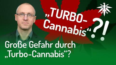 """Große Gefahr durch """"Turbo-Cannabis""""?"""