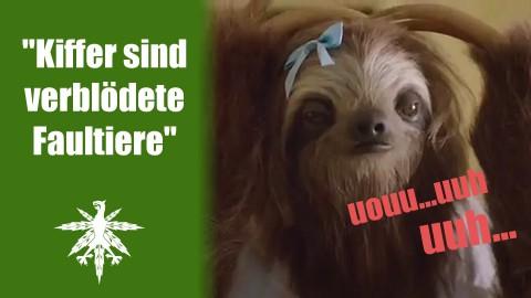 """Kiffer sind verblödete Faultiere"" | DHV News #62"