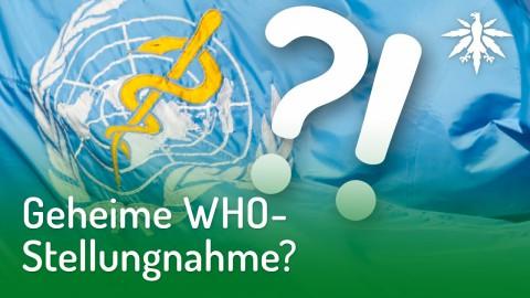 Geheime WHO-Stellungnahme? | DHV-News #188