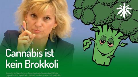 Cannabis ist kein Brokkoli | DHV-News #255