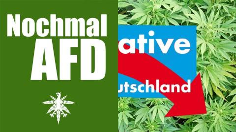AfD: Doch keine Lagerhaft für alle | DHV News #82