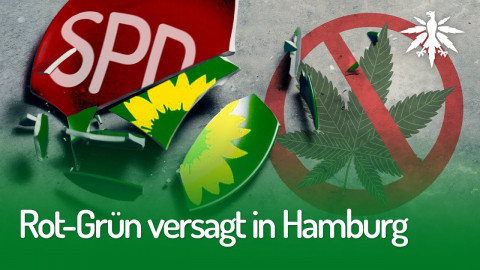 Rot-Grün versagt in Hamburg | DHV-News #251