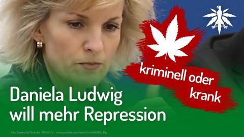 Daniela Ludwig will mehr Repression | DHV-News #234