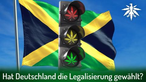 Hat Deutschland die Legalisierung gewählt? | DHV-News # 309