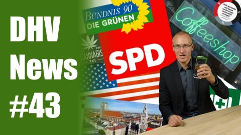 SPD Bayern beschließt Legalisierung | Bremen will Modellprojekt | DHV News #43