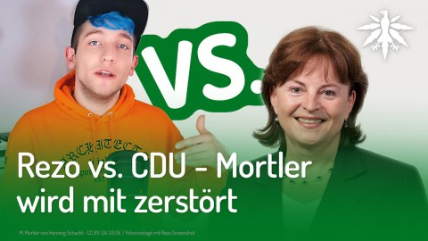 Rezo vs. CDU - Mortler wird mit zerstört | DHV-News #207