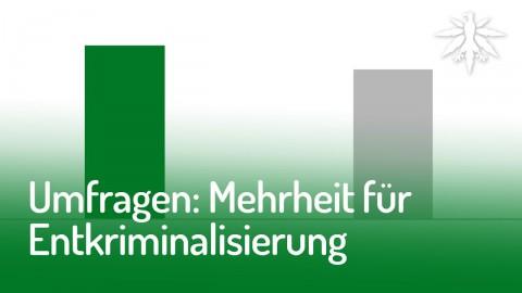 Umfragen: Mehrheit für Entkriminalisierung | DHV News #145