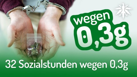32 Sozialstunden wegen 0,3g | DHV-News #227