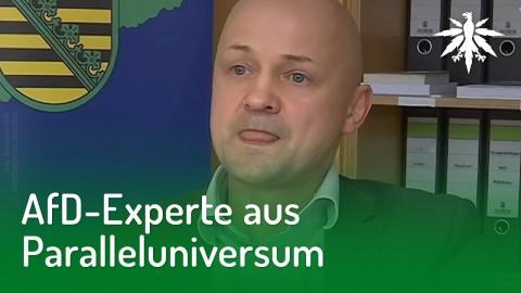 AfD-Experte aus Paralleluniversum | DHV-News #195