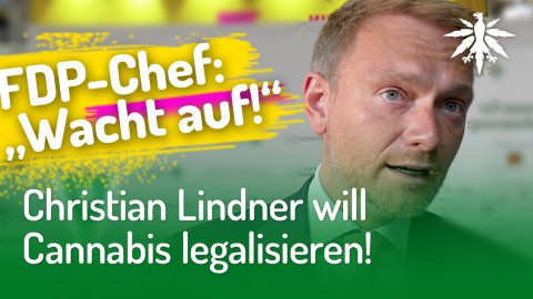 Christian Lindner will Cannabis legalisieren!
