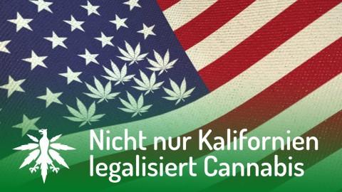 USA: Nicht nur Kalifornien legalisiert Cannabis