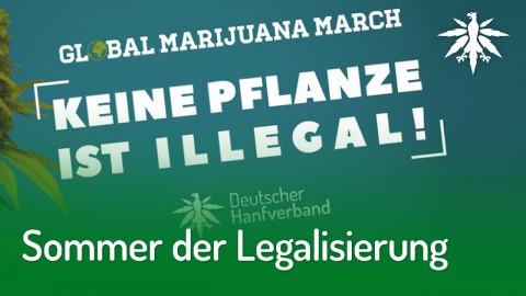 Sommer der Legalisierung: Smoke-In & Demo im Mai | DHV-News #204