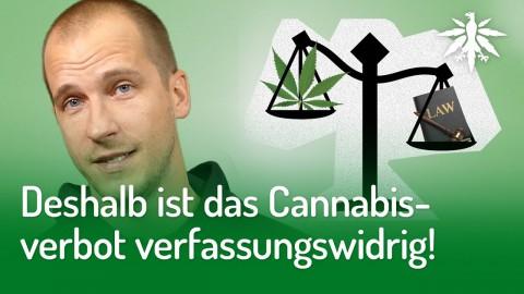 DESHALB ist das Cannabisverbot verfassungswidrig!