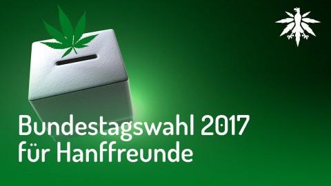 Bundestagswahl 2017 für Hanffreunde | DHV News #136