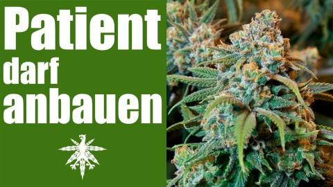 Erster Patient darf Cannabis anbauen | DHV News #96