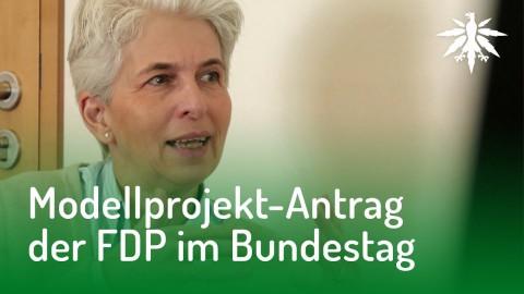 Modellprojekt-Antrag der FDP im Bundestag - Interview mit Dr. Strack-Zimmermann