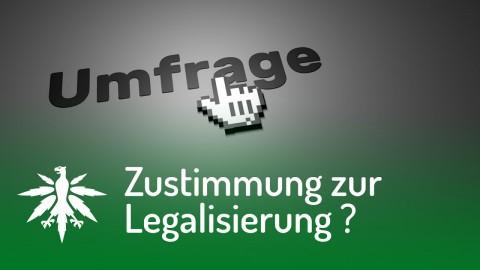 Zustimmung zur Legalisierung in Deutschland gesunken!? | DHV News #105