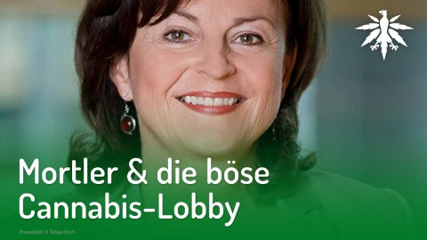 Mortler & die böse Cannabis-Lobby | DHV-News #199