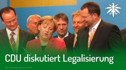 CDU diskutiert Legalisierung | DHV-News #224