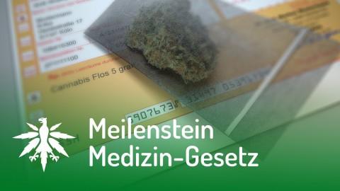 Meilenstein: Medizin-Gesetz verabschiedet! | DHV News #108