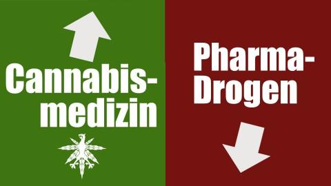 Cannabismedizin senkt Verbrauch von Pharma-Drogen | DHV News #88