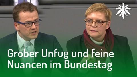 Grober Unfug und feine Nuancen im Bundestag | DHV-News #156
