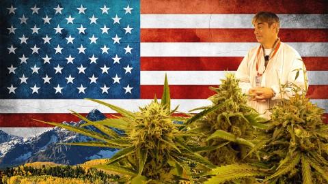Medizinischer Cannabis Grow bei Federal Medical | DHV USA Tour 2015 Part 5/10