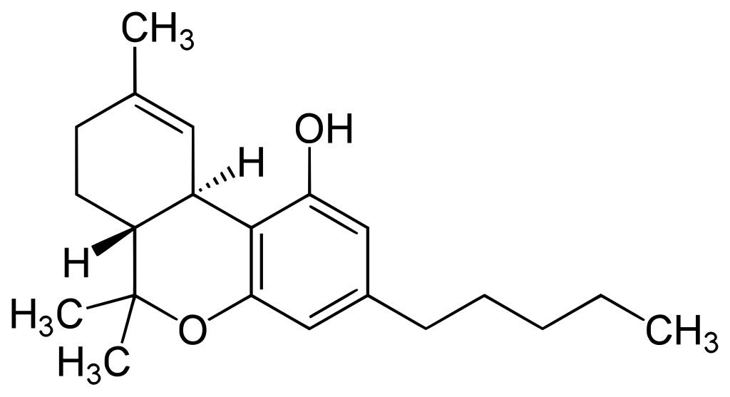 beeinflusst cannabis die gehirnentwicklung  neue studien